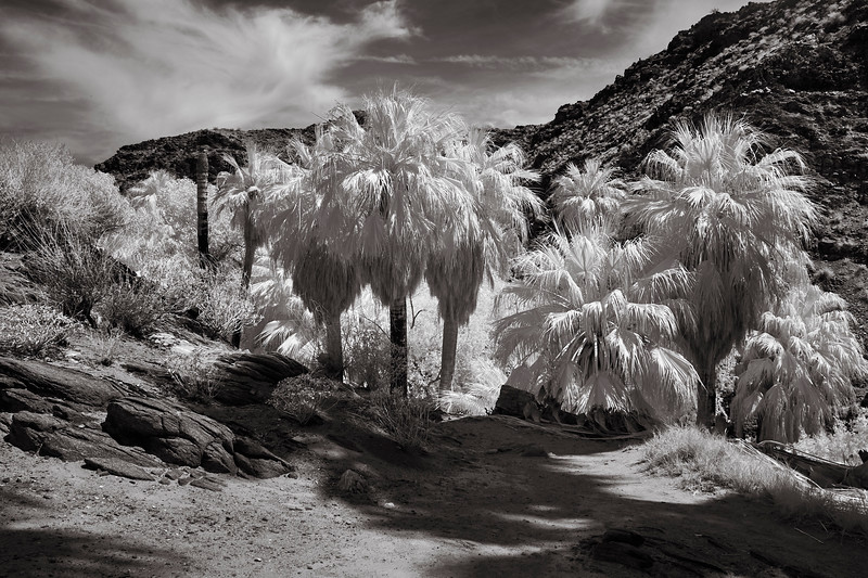 Indian Canyon, Rigler, Home