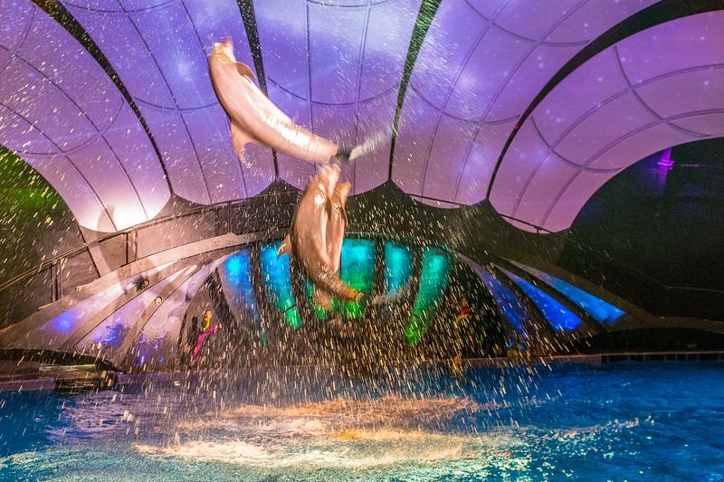 GA Aquarium with Linc, Ali & Abe-114.jpg