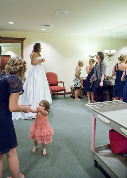 DSR_20140809Gayoso Wedding230.jpg