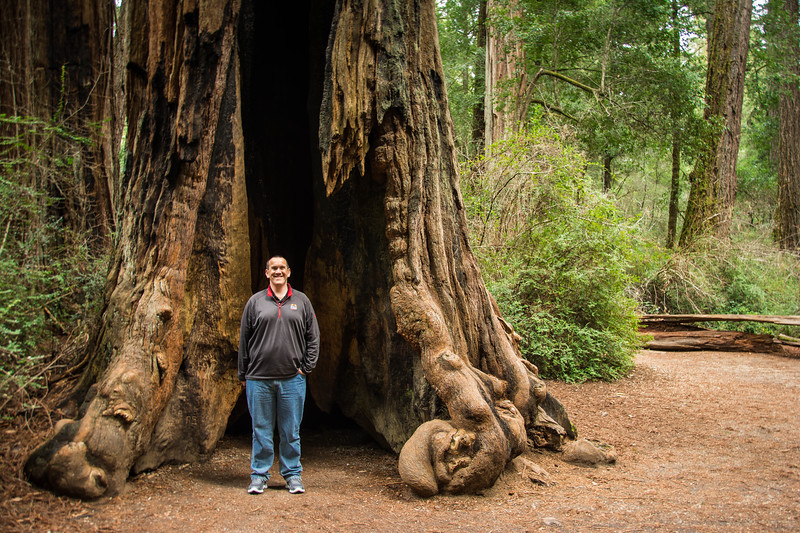 Redwood-28.jpg