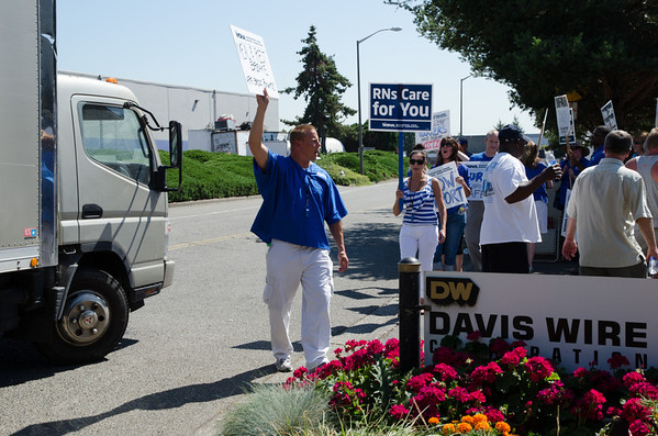 Davis Wire Picket