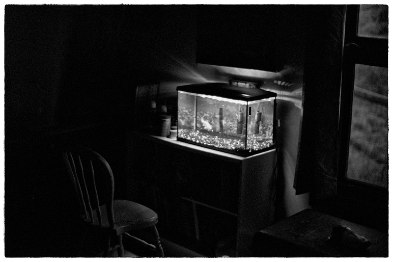 1-aquarium-and-chair Leica M3.jpg