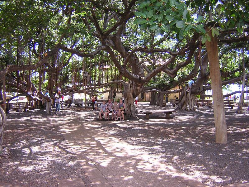 Maui 2005 175