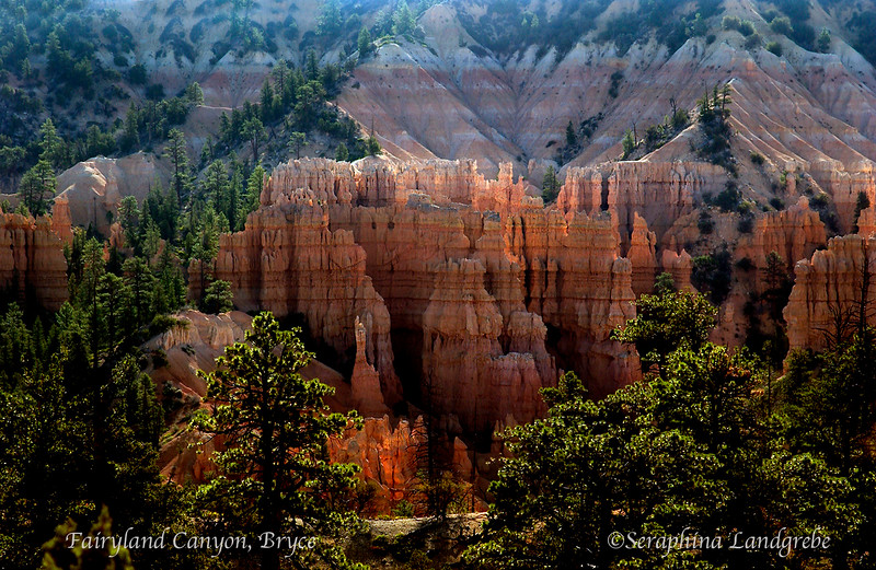 DSC_4997Bryce Fairyland canyon.jpg