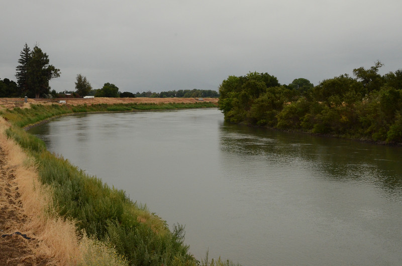 Sacramento River at Knights Landing