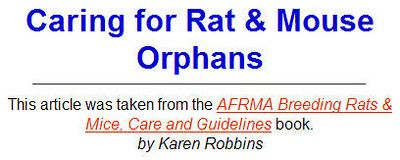 Caring for Rat & Mouse Orphans - AFRMA