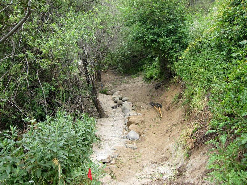 20110507005-El Prieto Trailwork.JPG