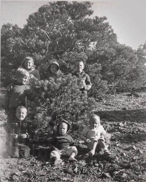 7Betsy baby xmas tree hunt043 (1).jpg