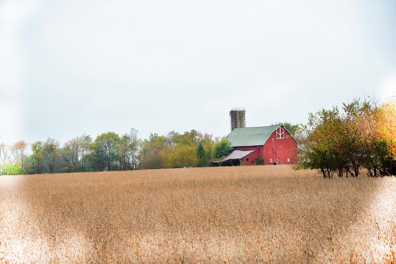 Richwood Barn2.jpg