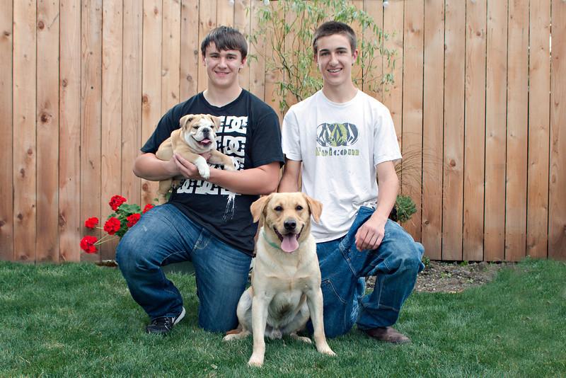 Dogs (9 of 14).jpg