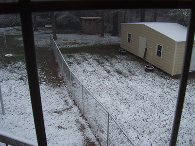 Snow 030109