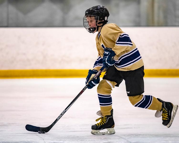 2018-2019_Navy_Ice_Hockey_Squirt_White_Team-82.jpg