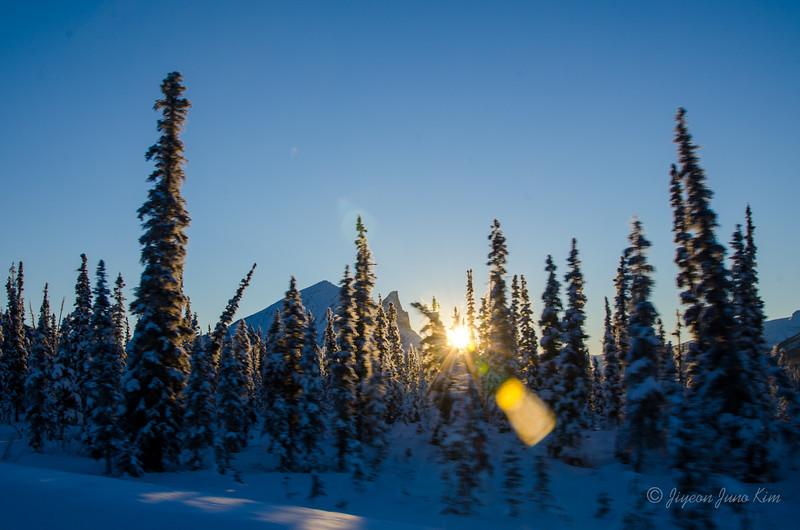 USA-Alaska-atigun pass-3130.jpg