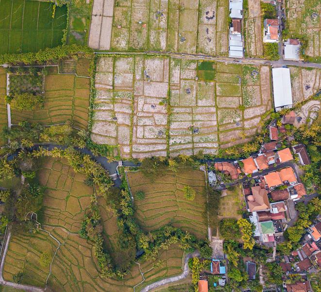 Bali (38).jpg