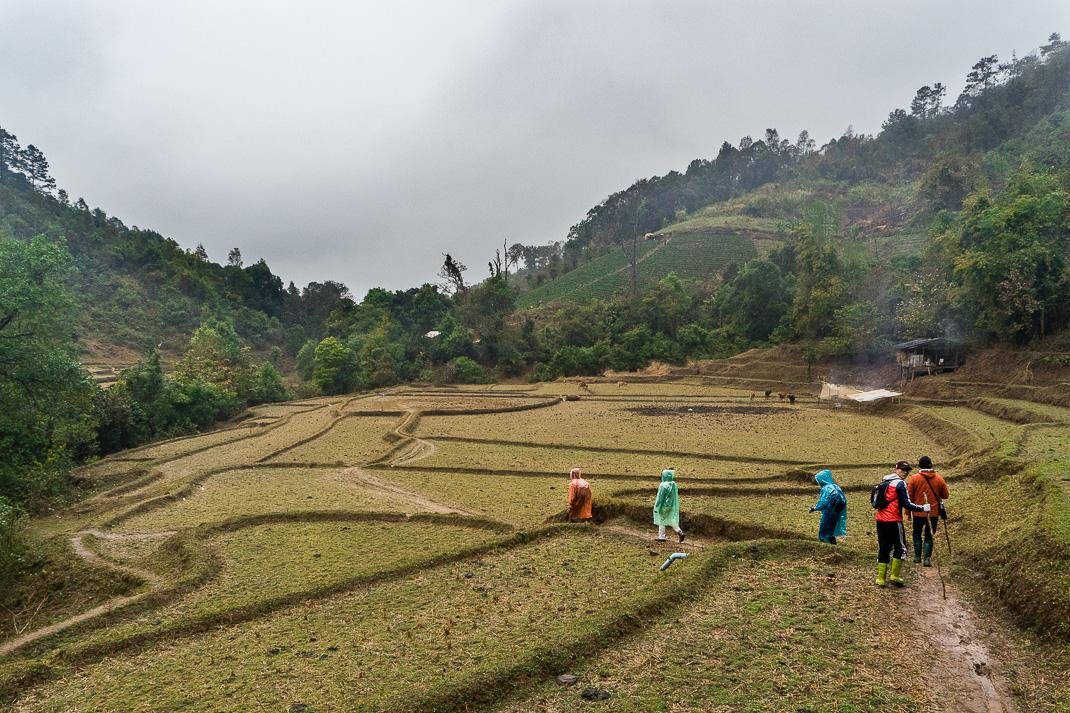 Mae Chaem Terraced Farmland