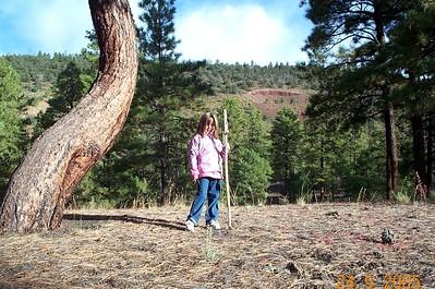 Induction 2005 Comanche