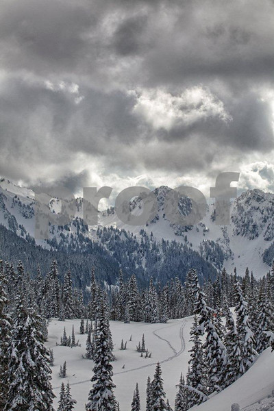 Tatoosh Range 7867_HDR.jpg