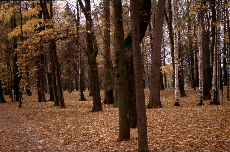 MaliRussia2_097.jpg