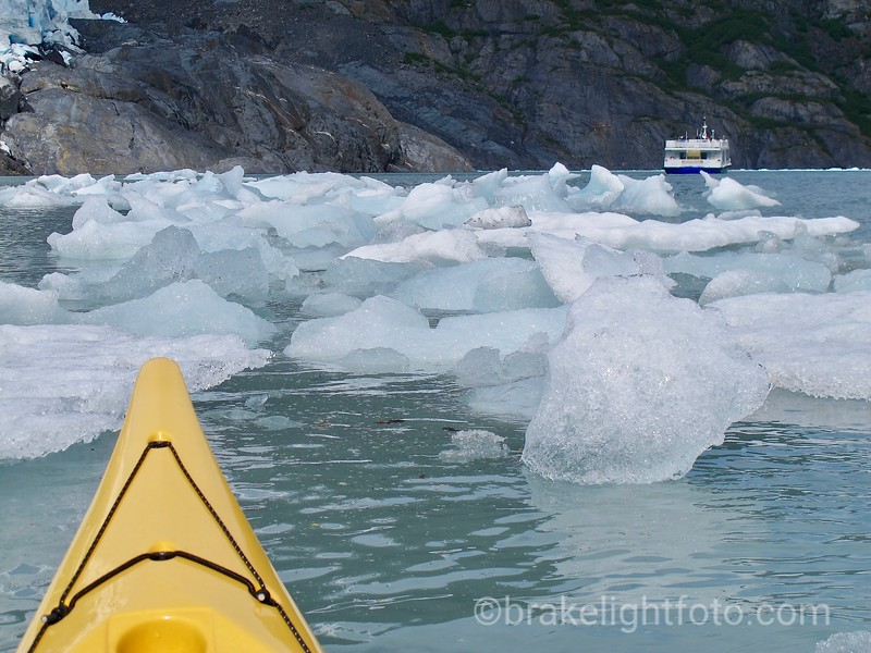 The Ptamigan Glacier Cruise