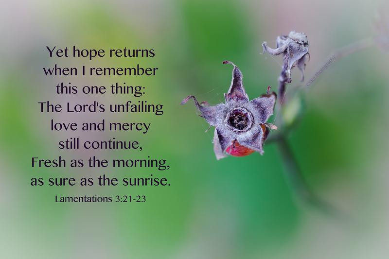 25_Lamentations3-21-23_CSR_2017-10-3.jpg