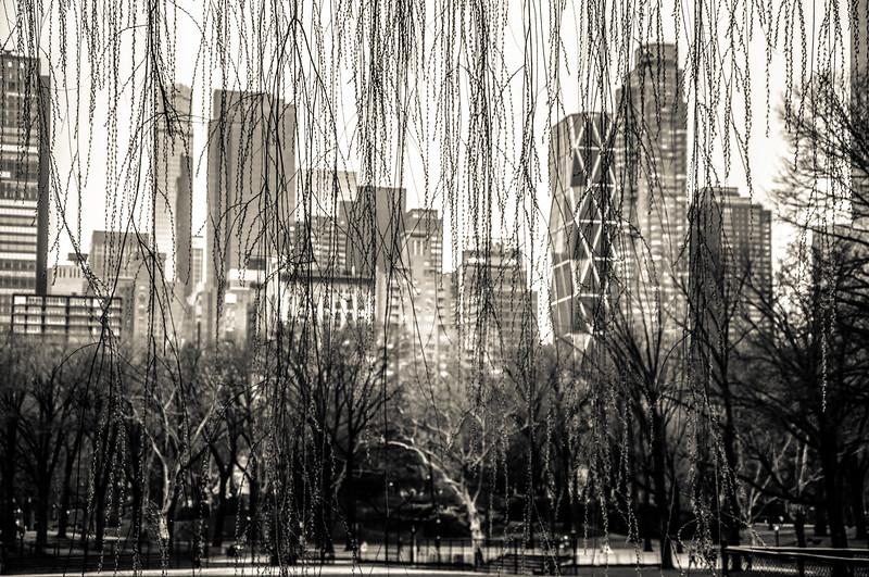 5_Fifth Avenue View.jpg