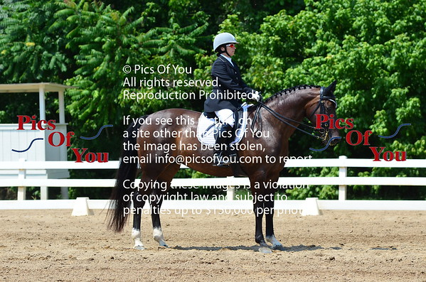 Dressage at Lexington July 2018