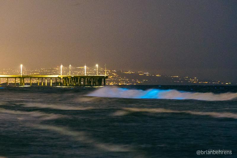2020-05-02-bioluminescent-waves-10.jpg