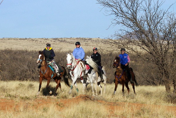 Old Pueblo Pioneer Endurance Ride Day 1