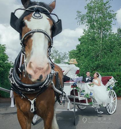 Y + T's wedding