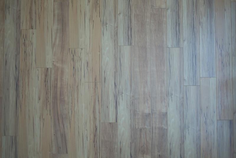 Wood BH5A7831.jpg