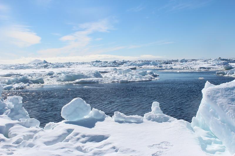 Antarctica 020.JPG
