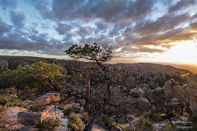 A Few Days in Southern AZ