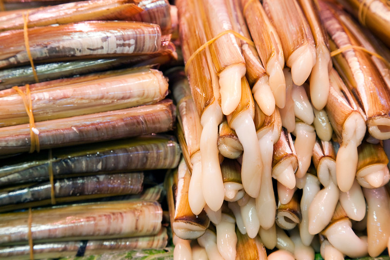 Razor clams, Boqueria market, town of Barcelona, autonomous commnunity of Catalonia, northeastern Spain