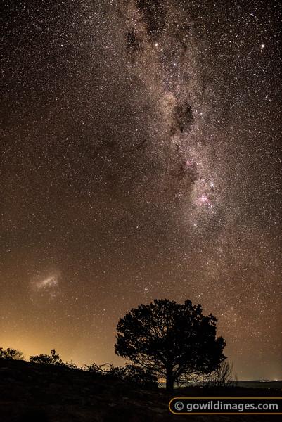 Milky Nights