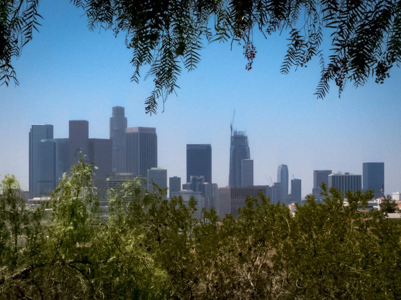 July 10 - Downtown Los Angeles.jpg