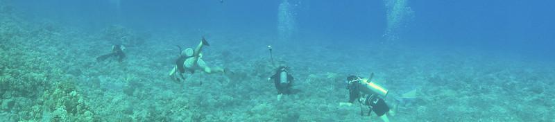 Maui - Hawaii - May 2013 - 21.jpg