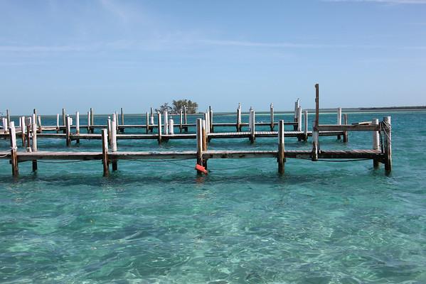 cruising Miami to Bimini