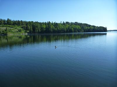 Lake Cleanup 13