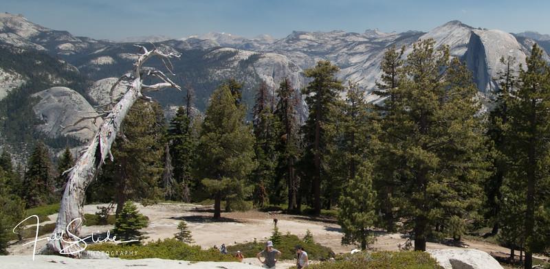 Yosemite 2018 -50.jpg