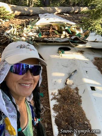 2019-11-15  Mammoth Piper PA-24 airplane crash