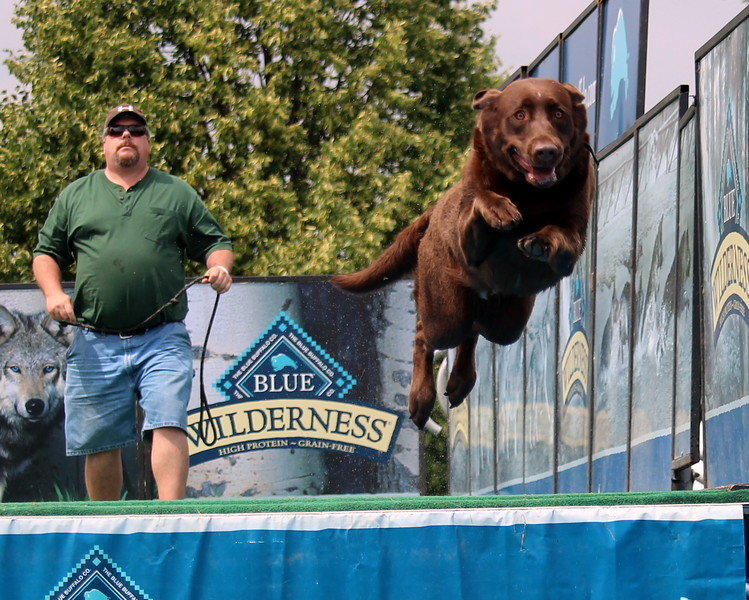 Dock Dogs at Fair-051.JPG