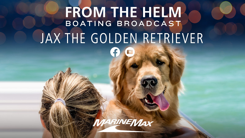 From The Helm Jax the Golden Retriever 1920 x 1080.jpg