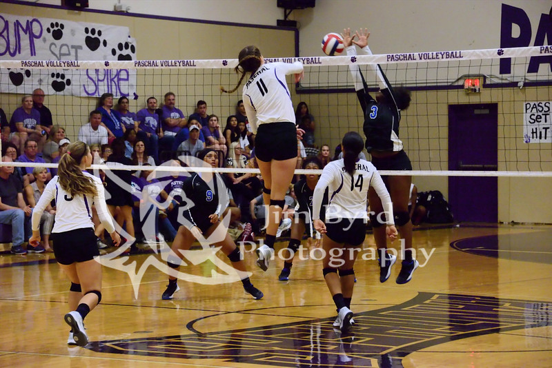 PHS volleyball vs N Crowley
