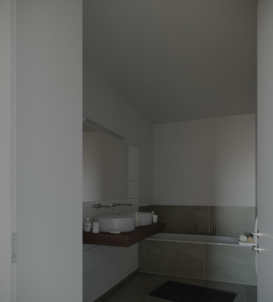 velux-gallery-bathroom-062.jpg