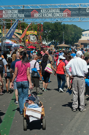 Alameda County Fair '14