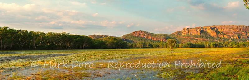 Late afternoon panorama, Anbangbang Billabong, Kakadu, Northern Territory