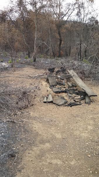 La Jolla Walk-in camp after 2013 fire