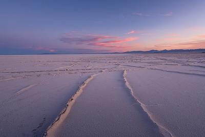 Salt Flats    June 2020