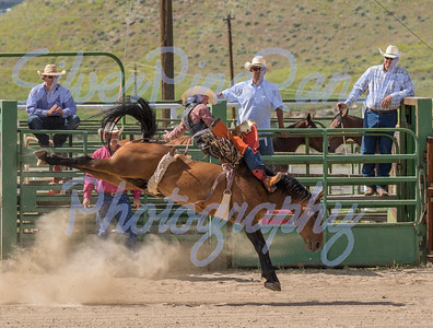 Big Horn Rodeo Circuit 2015