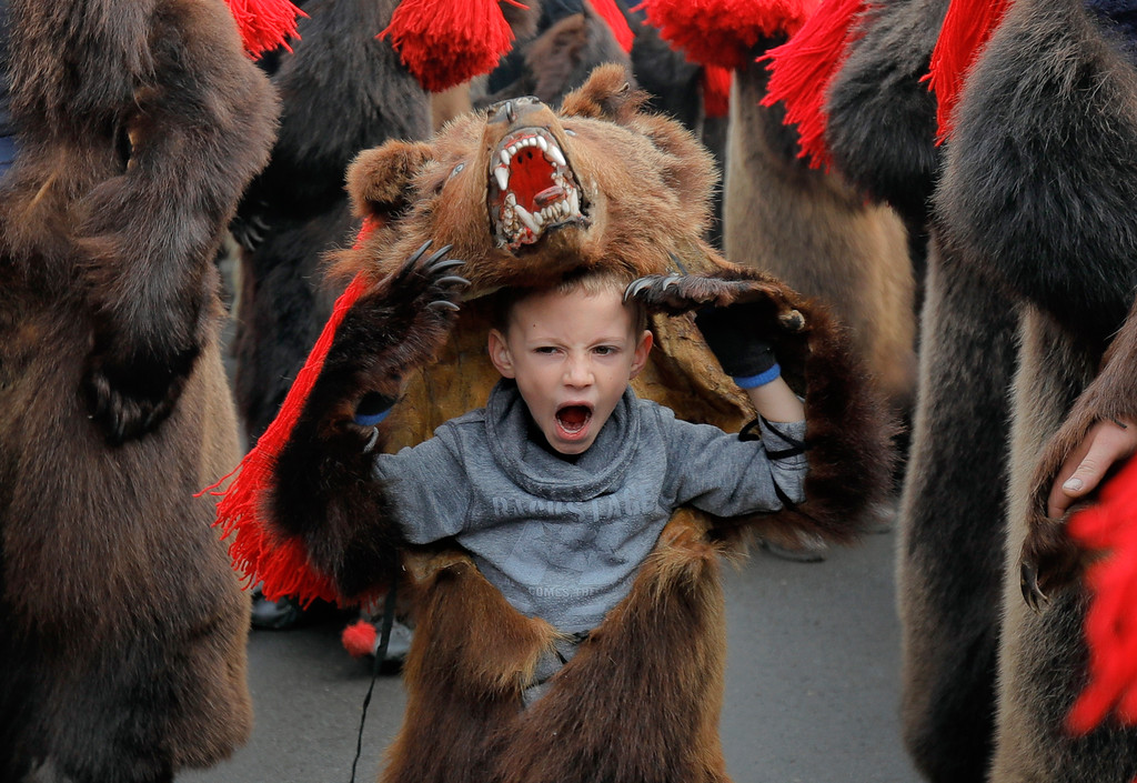 . In this Saturday, Dec. 30, 2017 picture a child wearing a bear fur costume yawns while dancing in Comanesti, Romania. Hundreds of people descend on the sleepy northern Romanian city of Comanesti every year dressed head to toe like bears, in costumes made from real fur, with the heads attached. It\'s a tradition that originated in pre-Christian times, when dancers wearing colored costumes or animal furs went from house to house in villages, singing and dancing to ward off evil. (AP Photo/Vadim Ghirda)